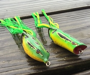 Best topwater lures best bass fishing lures for Frog lures for bass fishing