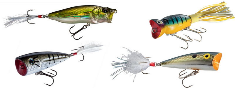 Best Poppers For Bass Best Bass Fishing Lures