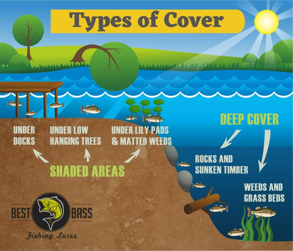 Types of Cover Bass Fishing